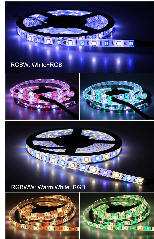 den-led-day-dan-12v-rgb5050-60p-10mm-sieu-sang-cao-cap-tld-12v-60p-colors