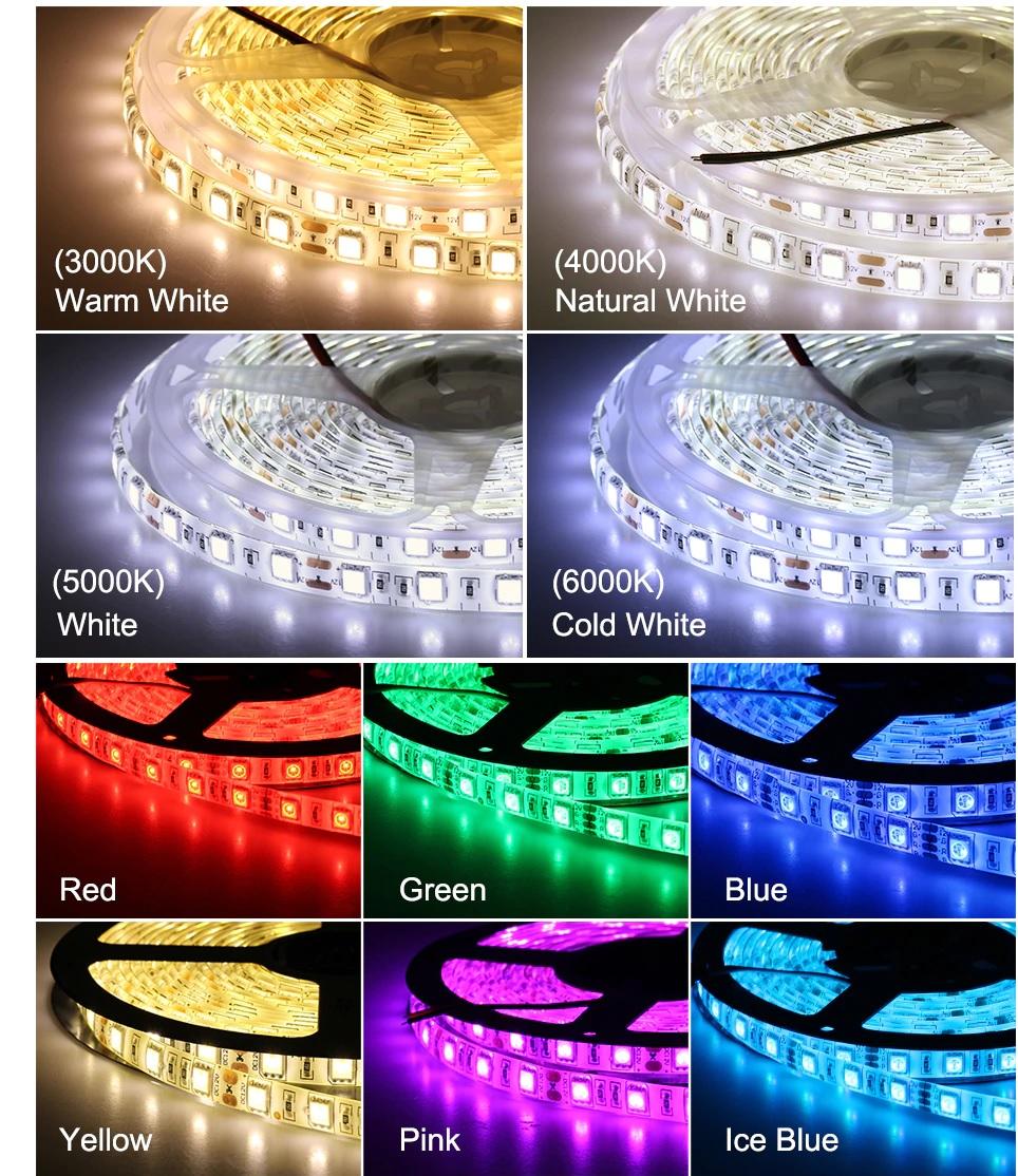 den-led-day-dan-12v-rgb5050-60p-10mm-sieu-sang-cao-cap-tld-12v-60p-color