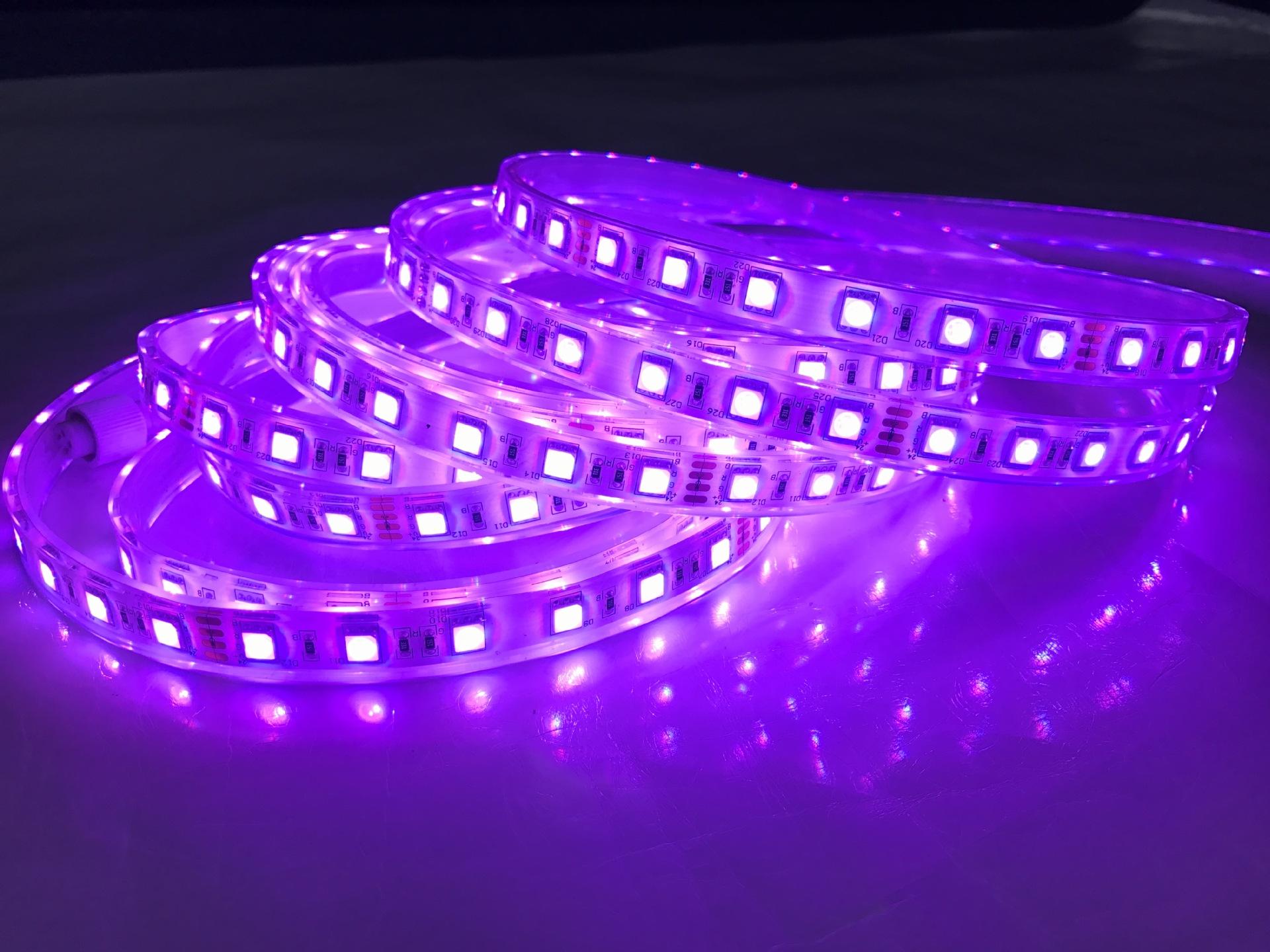 led-day-12v-chong-nuoc-ip68-rgb-5050-sieu-sang-cao-cap-tld-12v-60p-violet