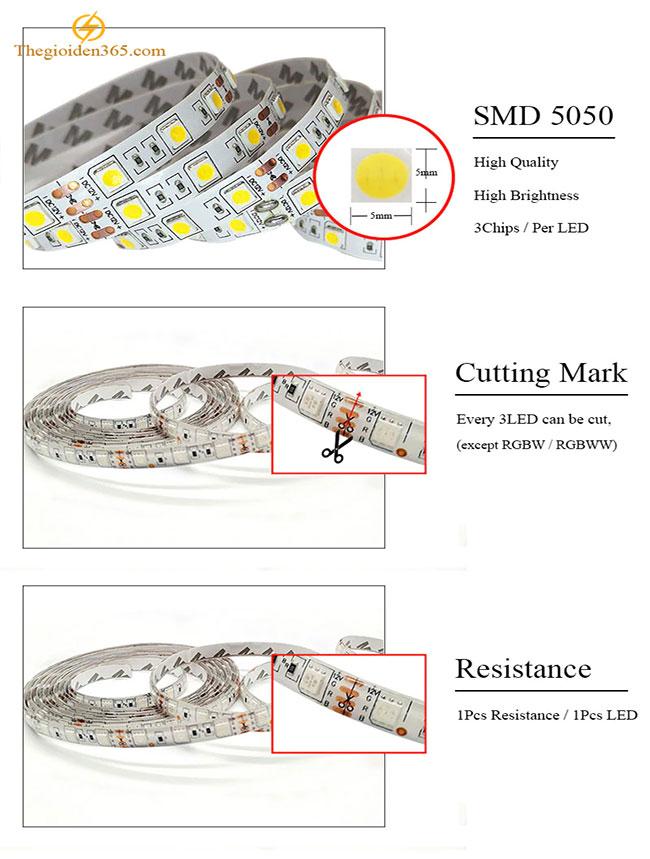 den-led-day-12v-smd5050